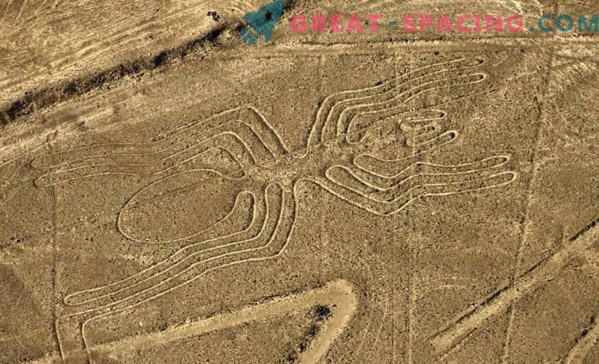 Starożytne rysunki na pustyni Nazca. Ufolodzy wskazują na pochodzenie pozaziemskie