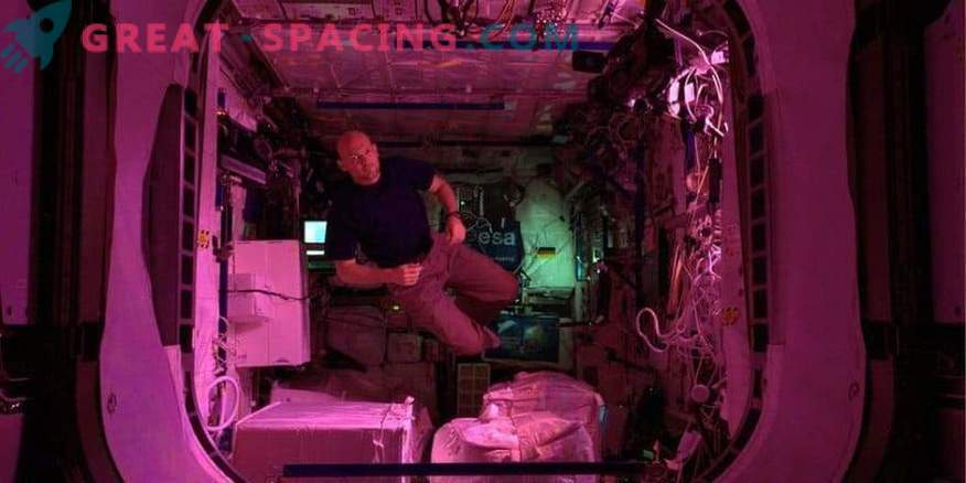 Alexander Gerst w laboratorium ISS